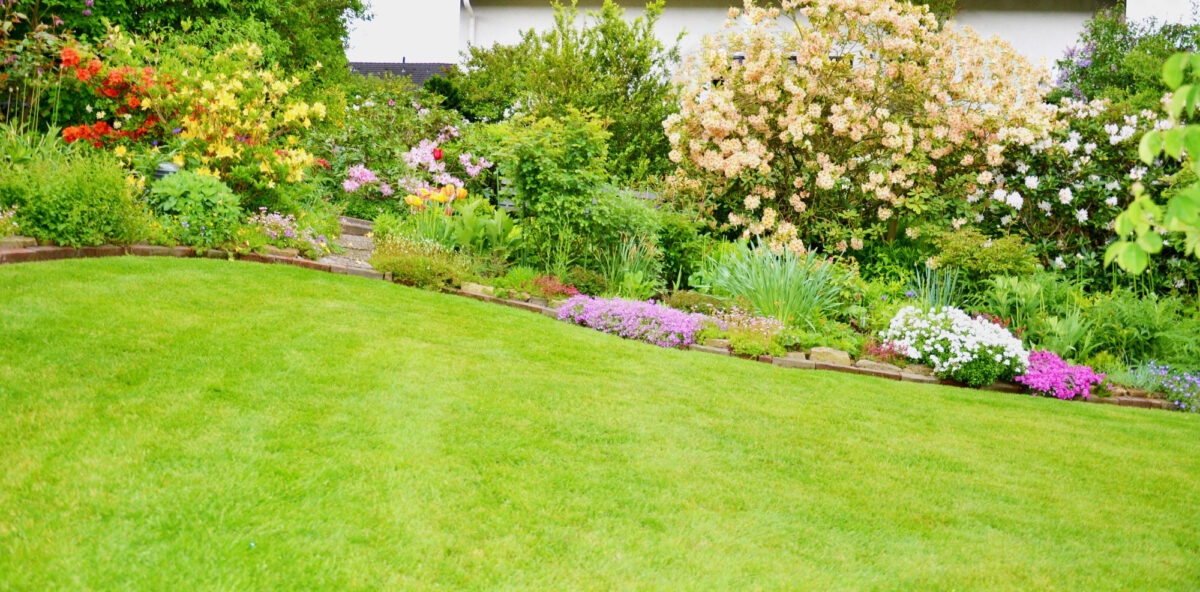 5 Exquisite Lawn Edging Ideas That Will Transform Your Lawn